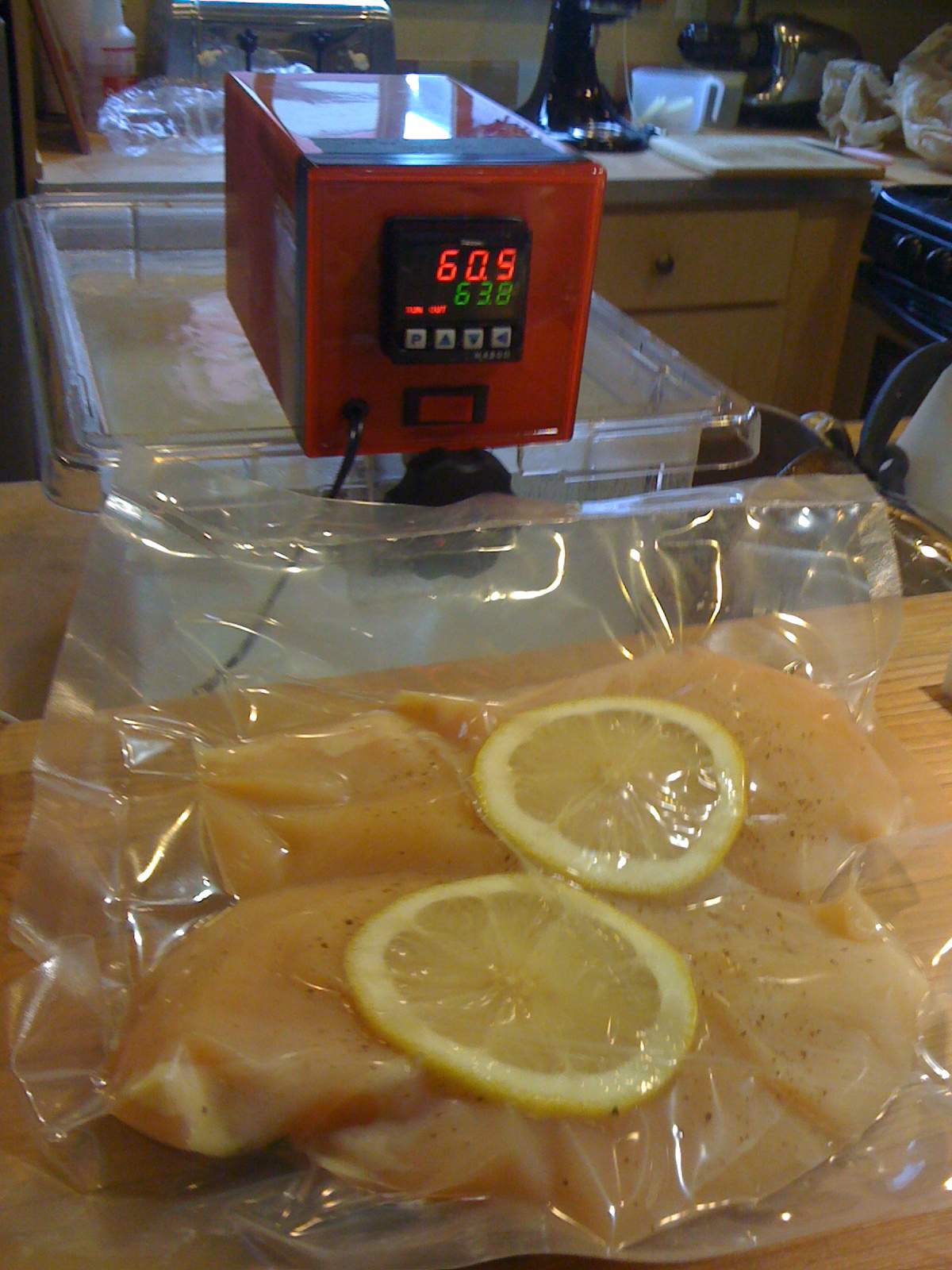 the 75 immersion circulator in action - Immersion Circulator