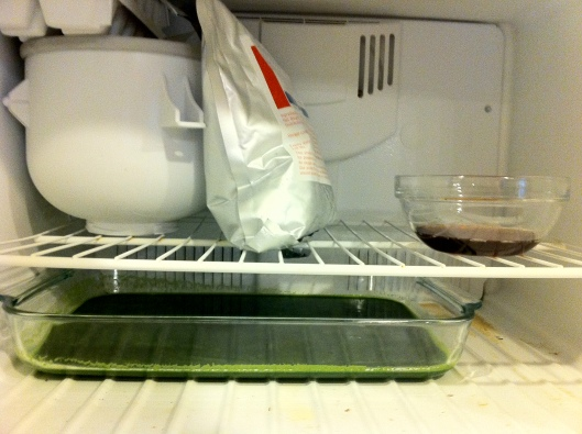Freezing a Salad