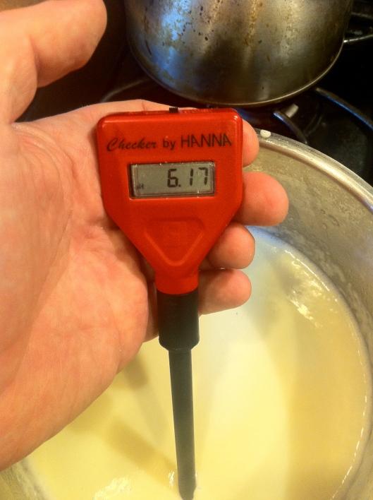 Checking The Cheese pH