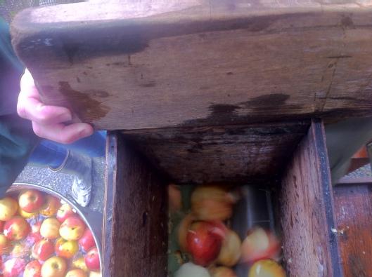 Grinding Apples