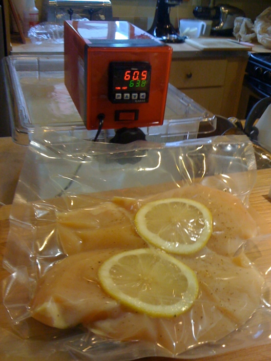 Sous Vide Circulator: version 1.5